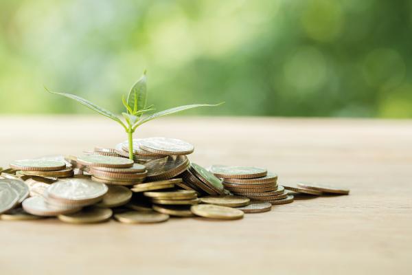 Bæredygtige investeringer